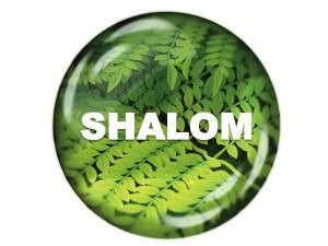 Shalom Ethos Workshop Christian Education