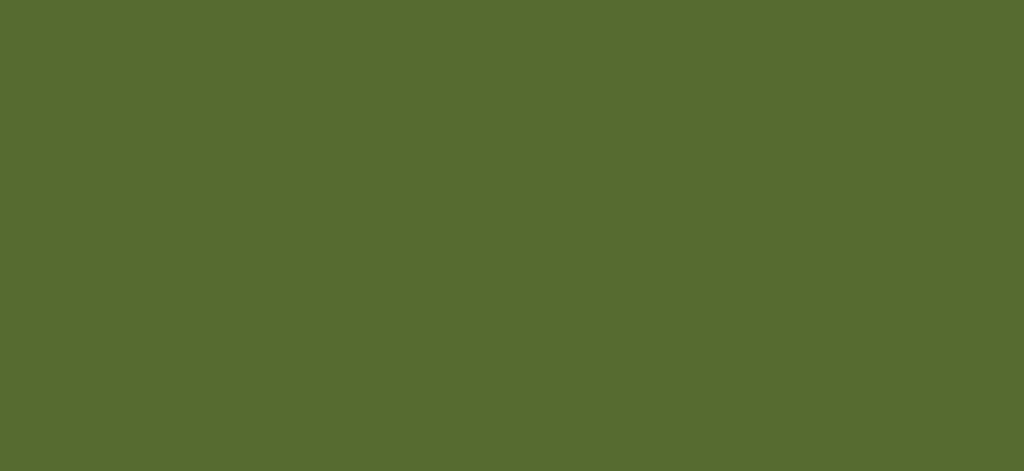 Ringsfield Hall Ecoactivity Centre